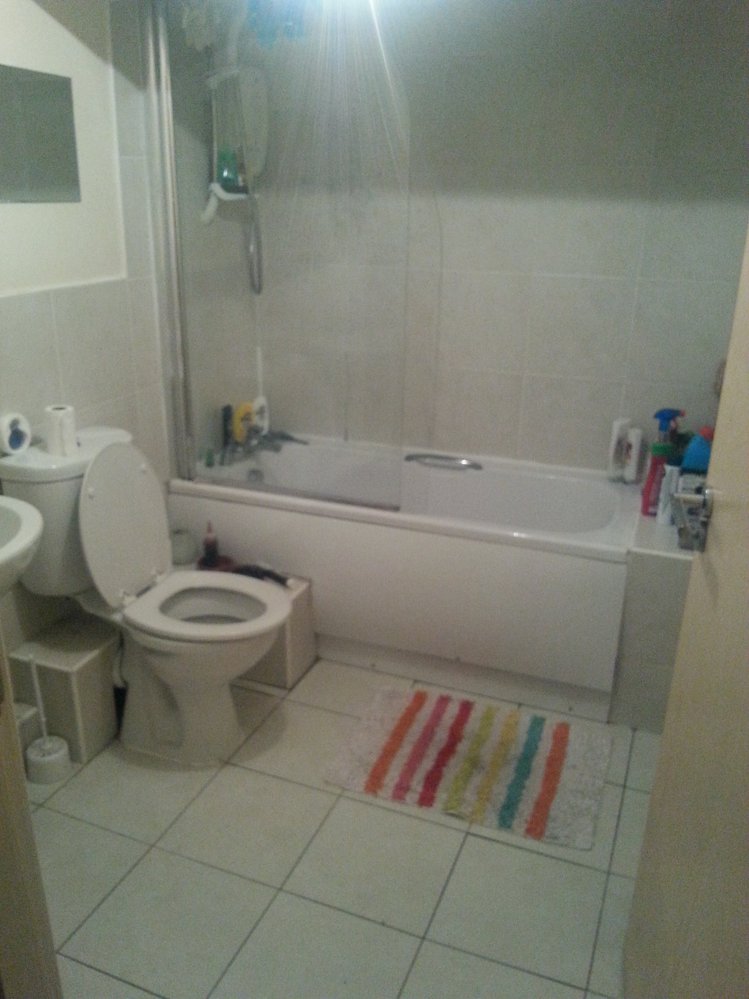 3 wynnstay flat 1 bathroom